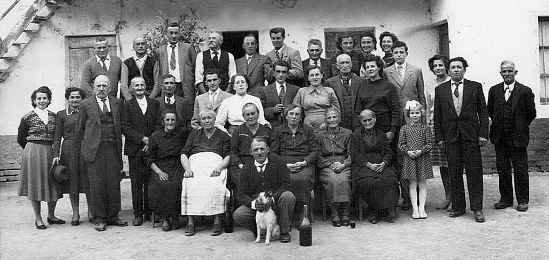 Azienda Agricola Angelo Negro e Figli - Azienda storica nel Roero