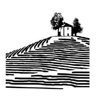 Azienda Agricola Angelo Negro e Figli - Vini del Roero
